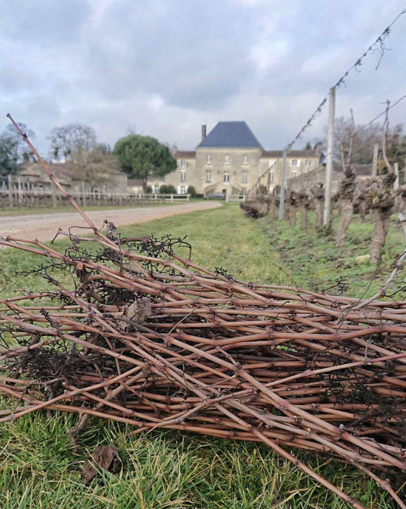chateau vigneron vignes