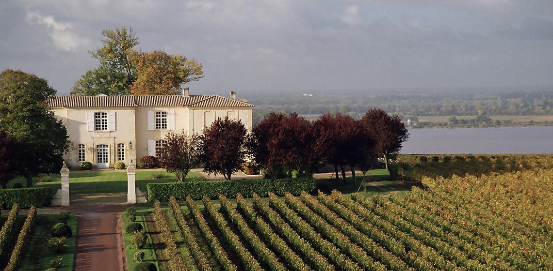 Blaye-Cotes-de-Bordeaux-rouge-9