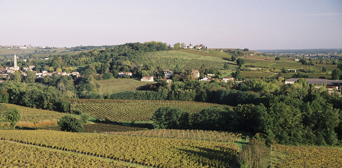 Bordeaux-Haut-Benauge-blanc-sec-7
