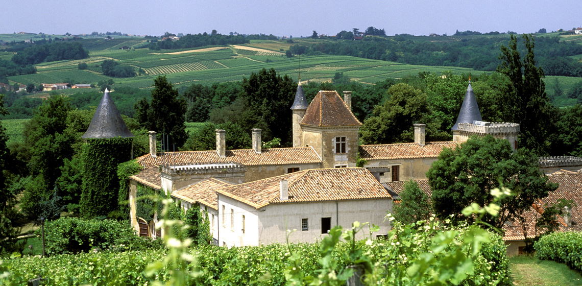 Cotes-de-Bordeaux-Saint-Macaire-blanc-doux-9