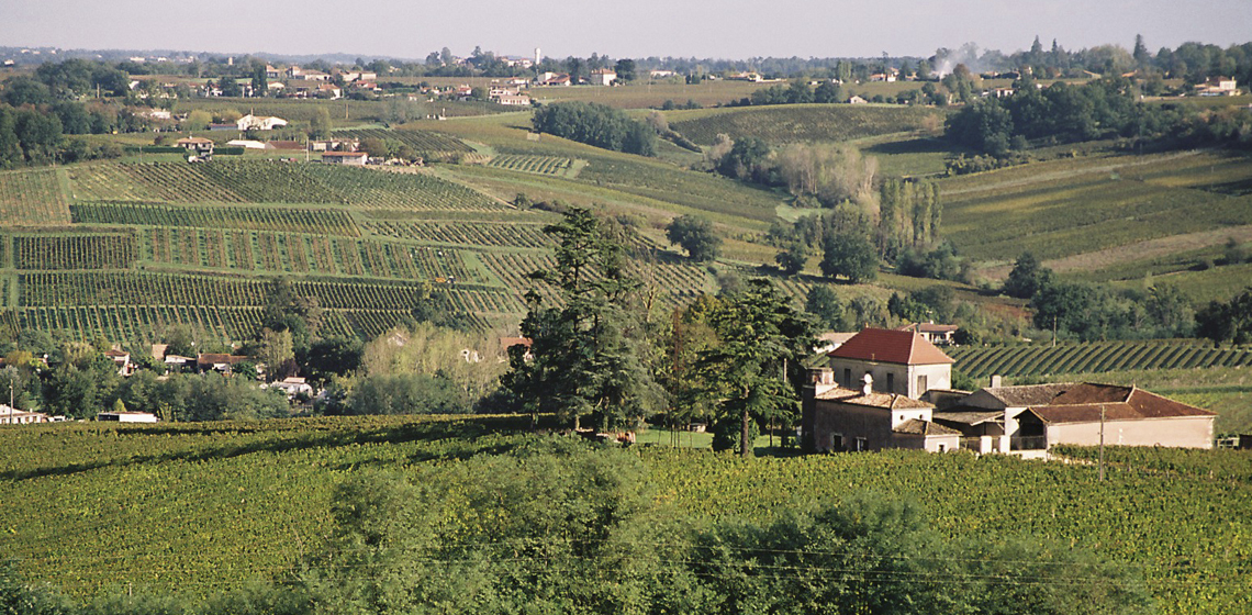 Sainte-Foy-Cotes-de-Bordeaux-rouge-7