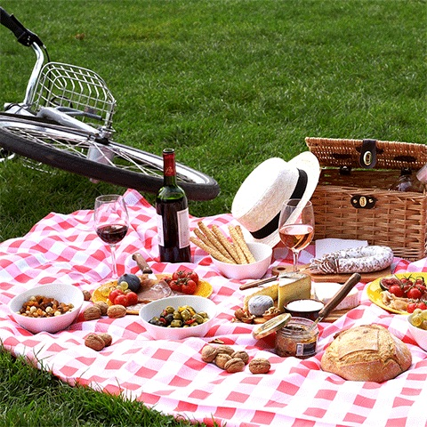 Pic nic in the park