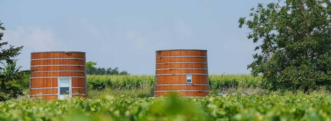 4 außergewöhnliche Aktivitäten in Bordeaux