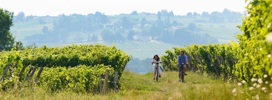 Bordeaux met de fiets: een weekendje fietsen door de wijngaarden