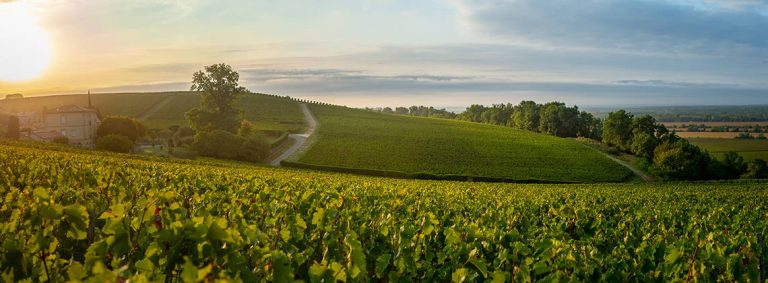 Bordeaux passe au vert