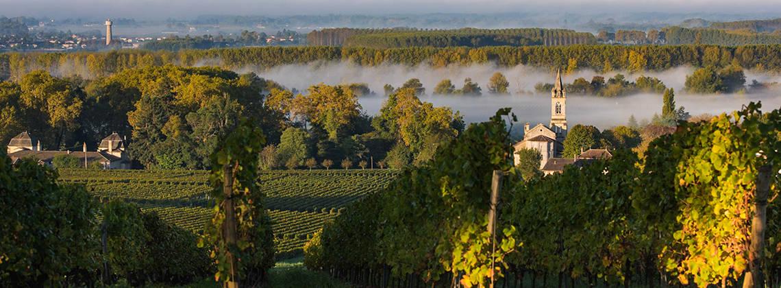 Les appellations de Bordeaux pour les nuls