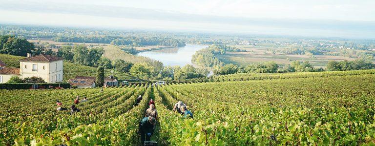 Reisgids voor een weekje Bordeaux!