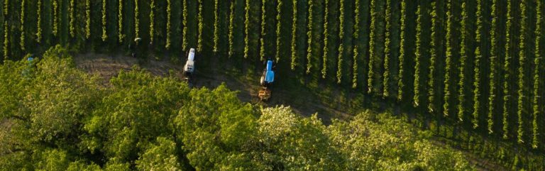 Taking technology to the vineyard