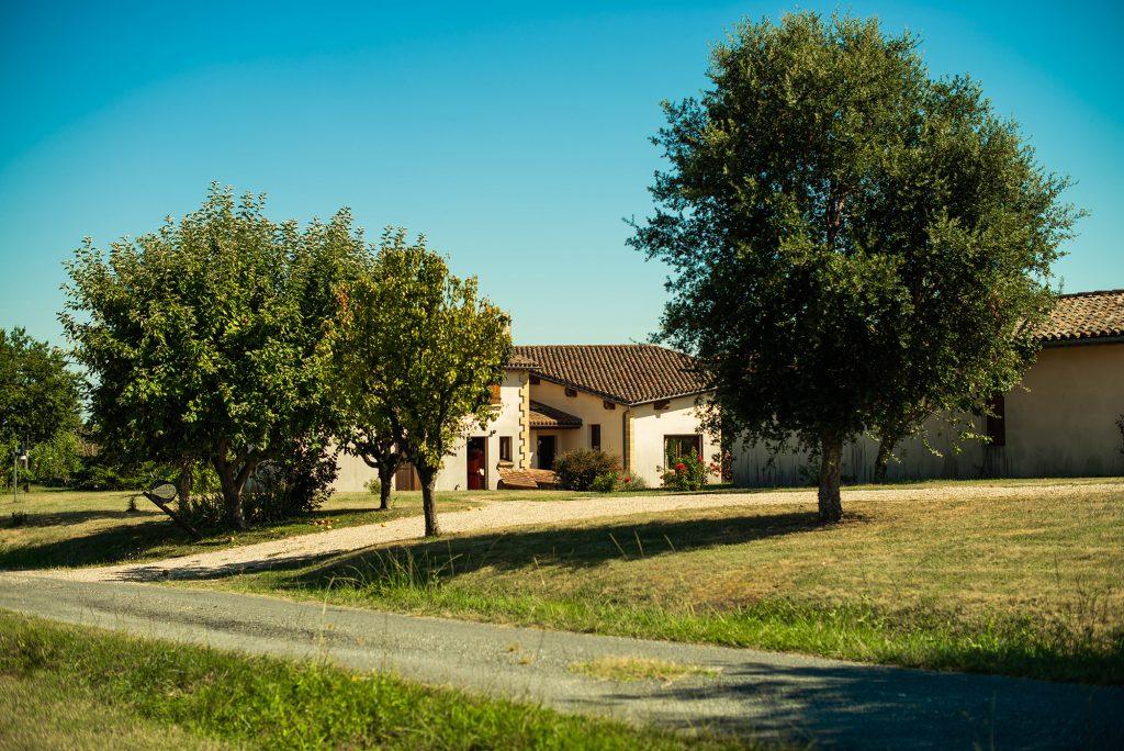 wijngaard château natuur