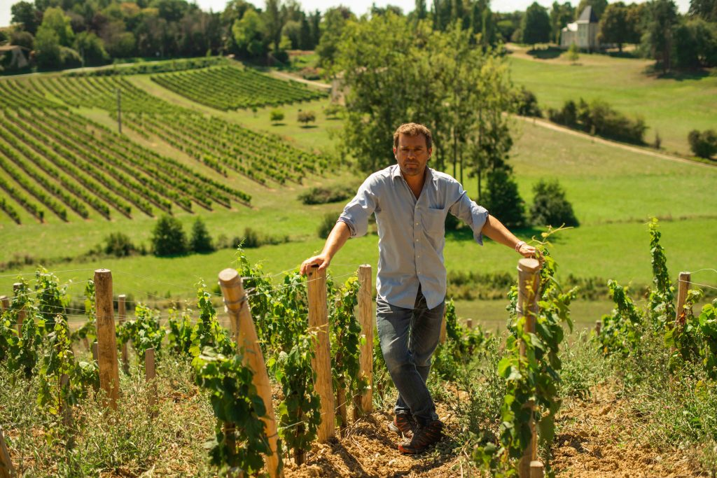 vigneron nature vignoble