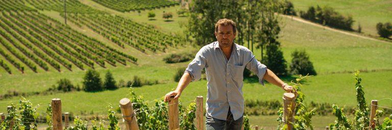 Des vins frais et fruités de l'Entre-Deux-Mers