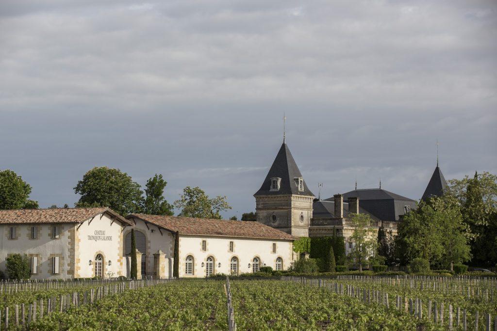 bordeaux vineyards landscape