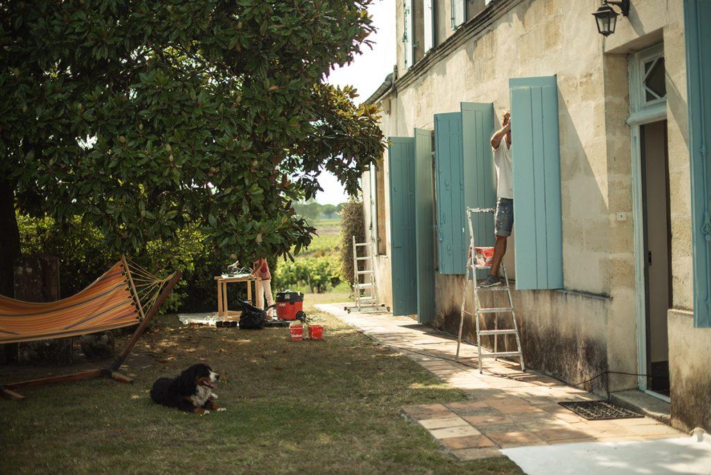 huis hond luifel blauw