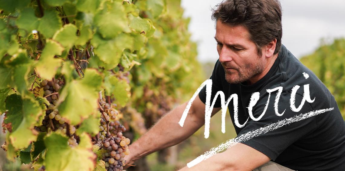 Les vins de Bordeaux disent MERCI aux soignants