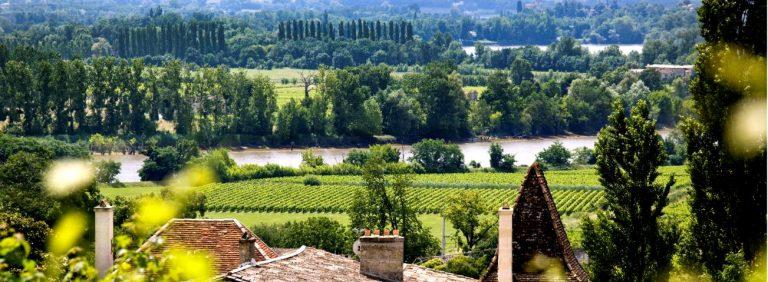 Carte postale des Côtes de Bordeaux
