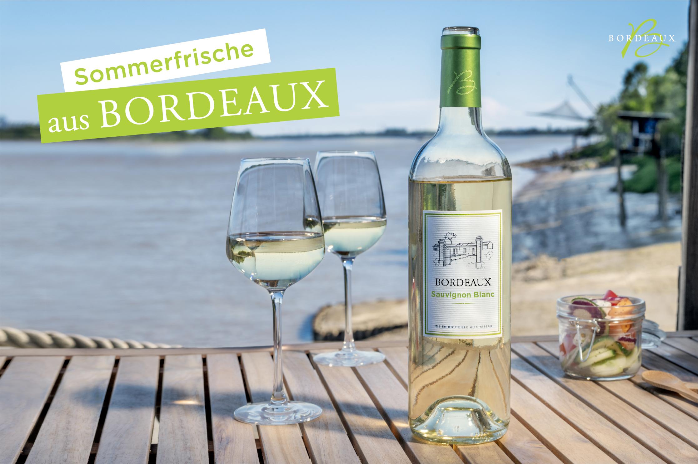 Atlantikküsten-Feeling mit weißen Bordeaux-Weinen