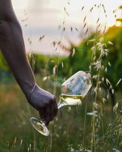 ethical bordeaux wines