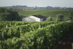 chateau de bonhoste bordeaux wine