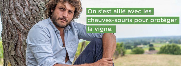 Développement durable, découvrez 4 acteurs du changement dans le vignoble bordelais.