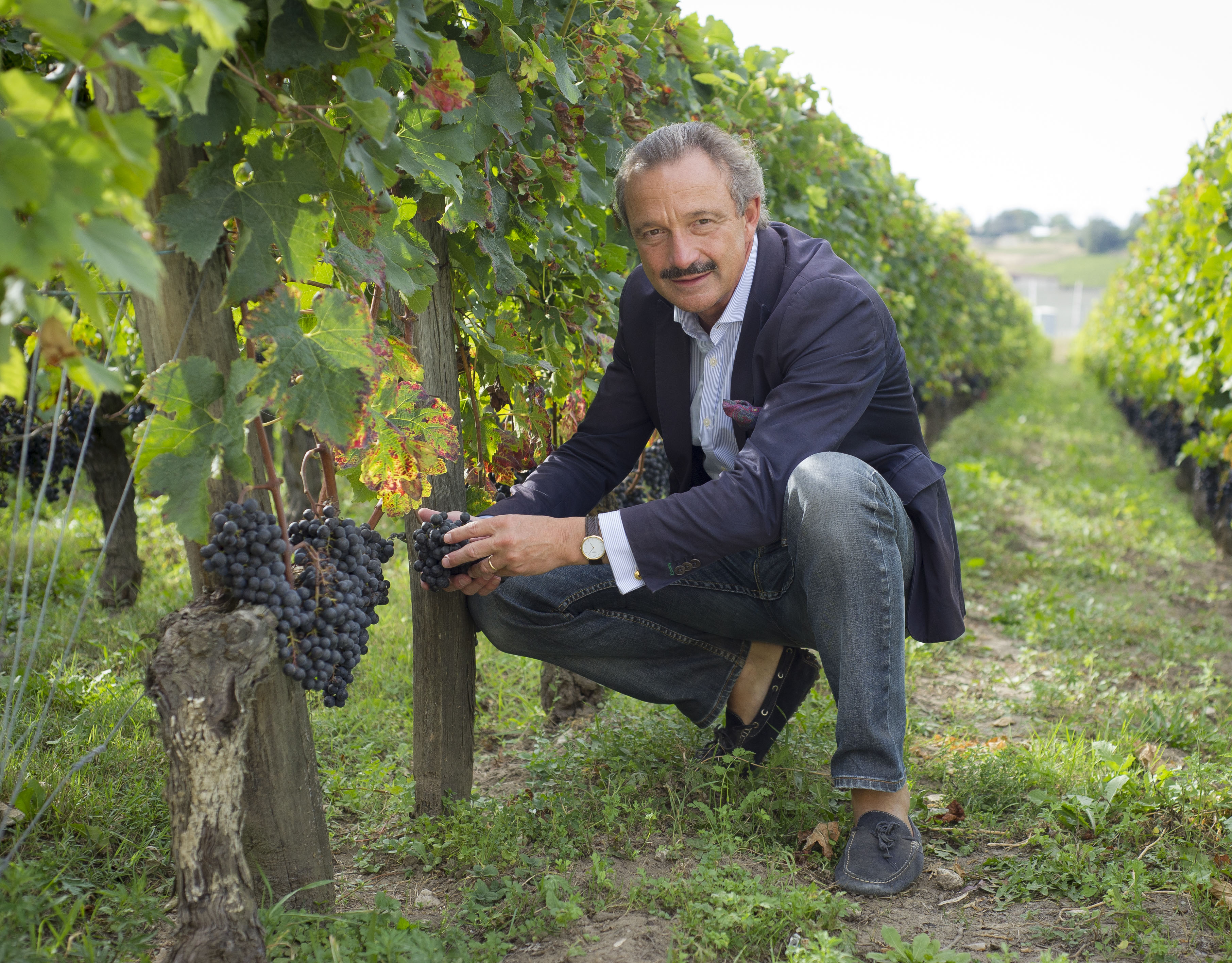 Deutsche Winzer in Bordeaux: Stephan Graf von Neipperg