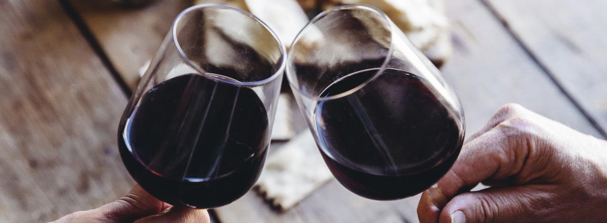 Frischer Wind im Weinberg – Moderne Rotweine aus Bordeaux