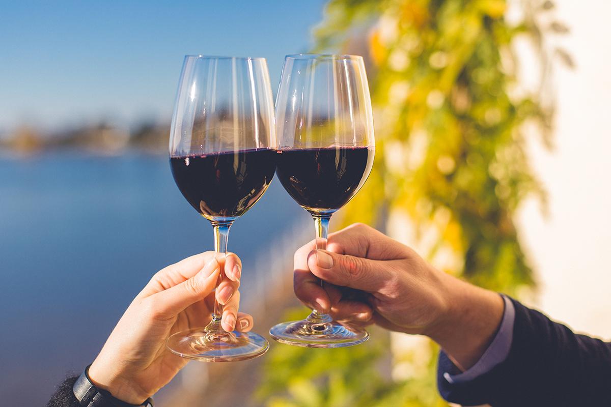 Bordeauxs vegane Weinvielfalt