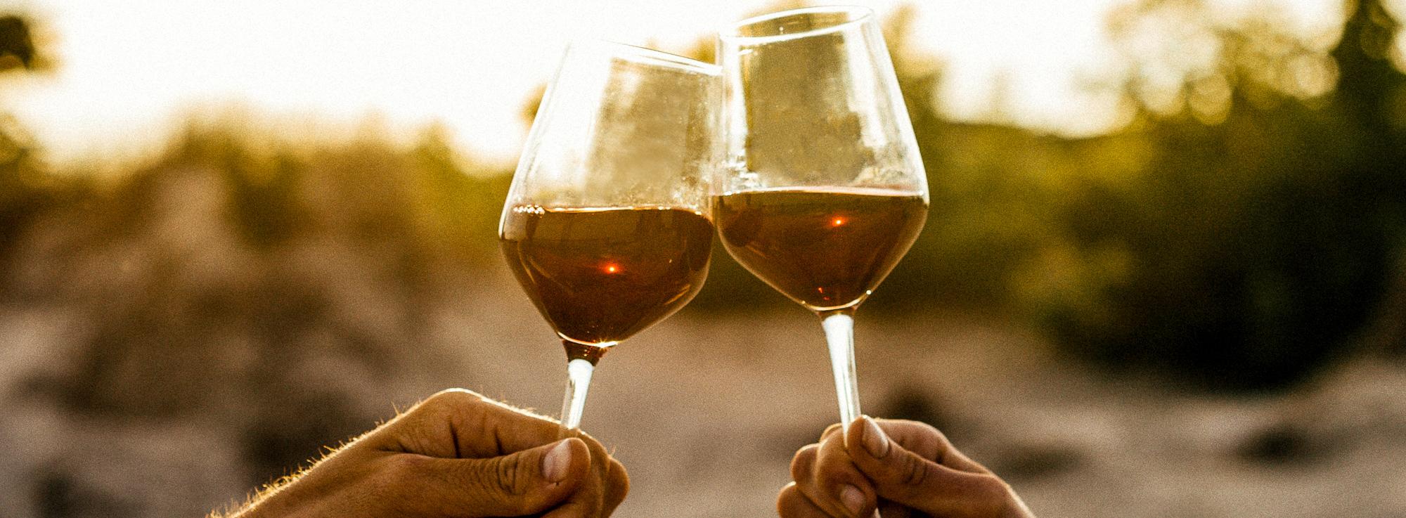 Les foires aux vins 2019, c'est maintenant !