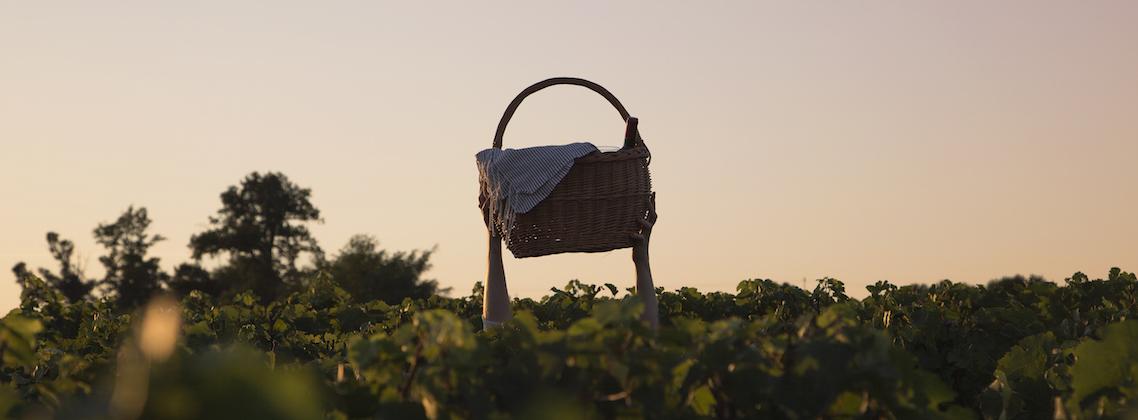 5 manières d'apprécier les couchers du soleil avec les vins de Bordeaux