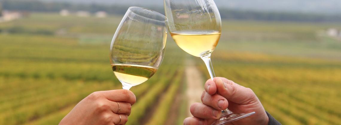 Bordeaux's White Wines