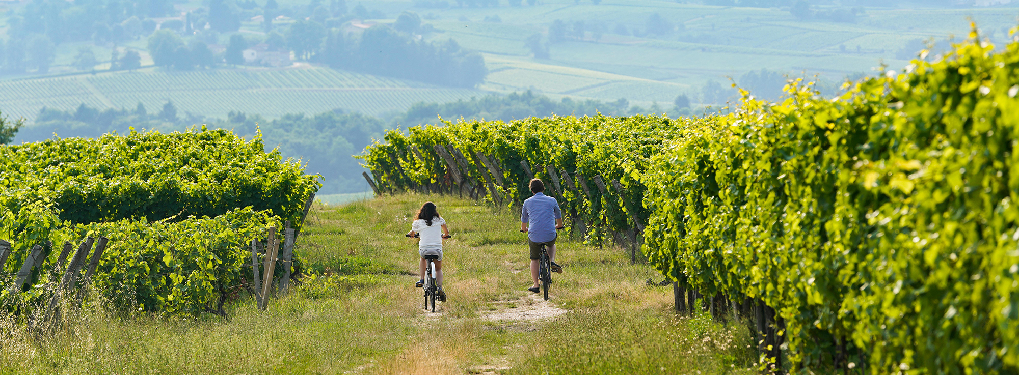 Bordeaux by bike: A weekend cycling through the vineyards