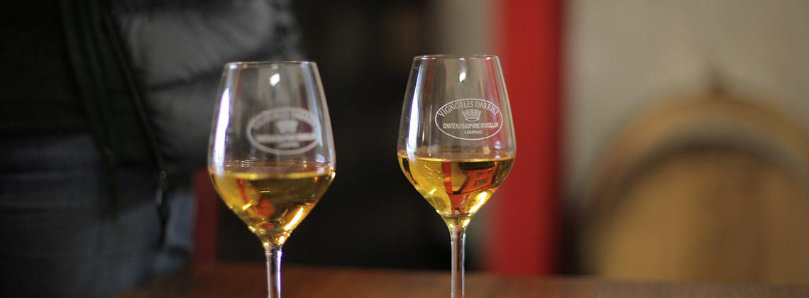 Focus sur les vins blancs doux