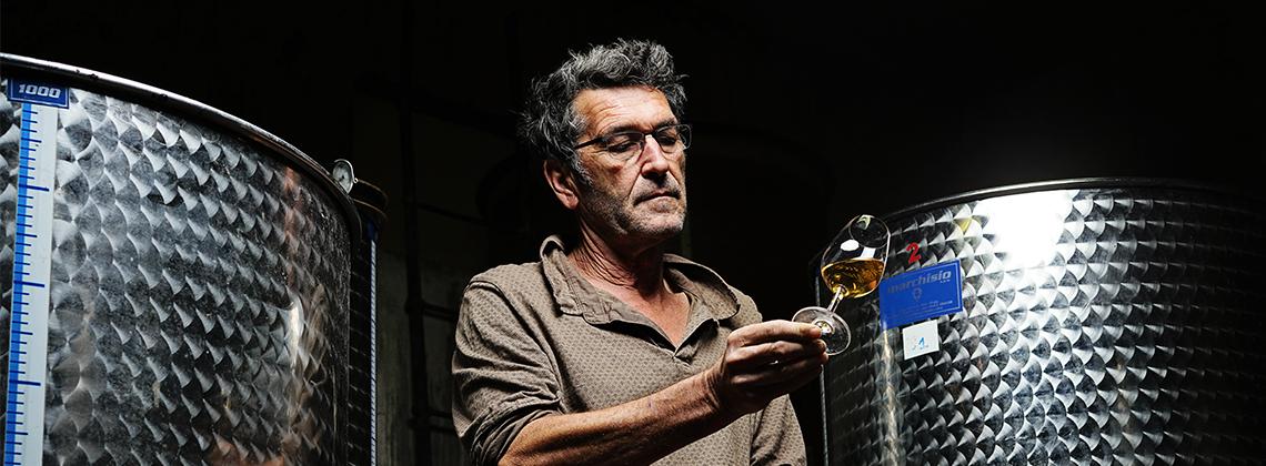 Vincent Quirac, un vagabond devenu vigneron