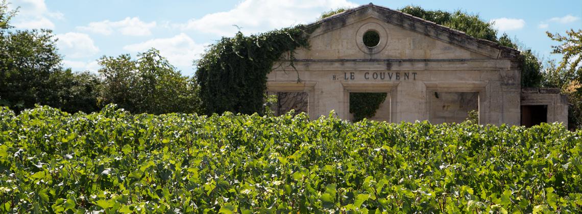 Entretien avec Karina Pons Viticultrice Vignoble Viaud-Sentout