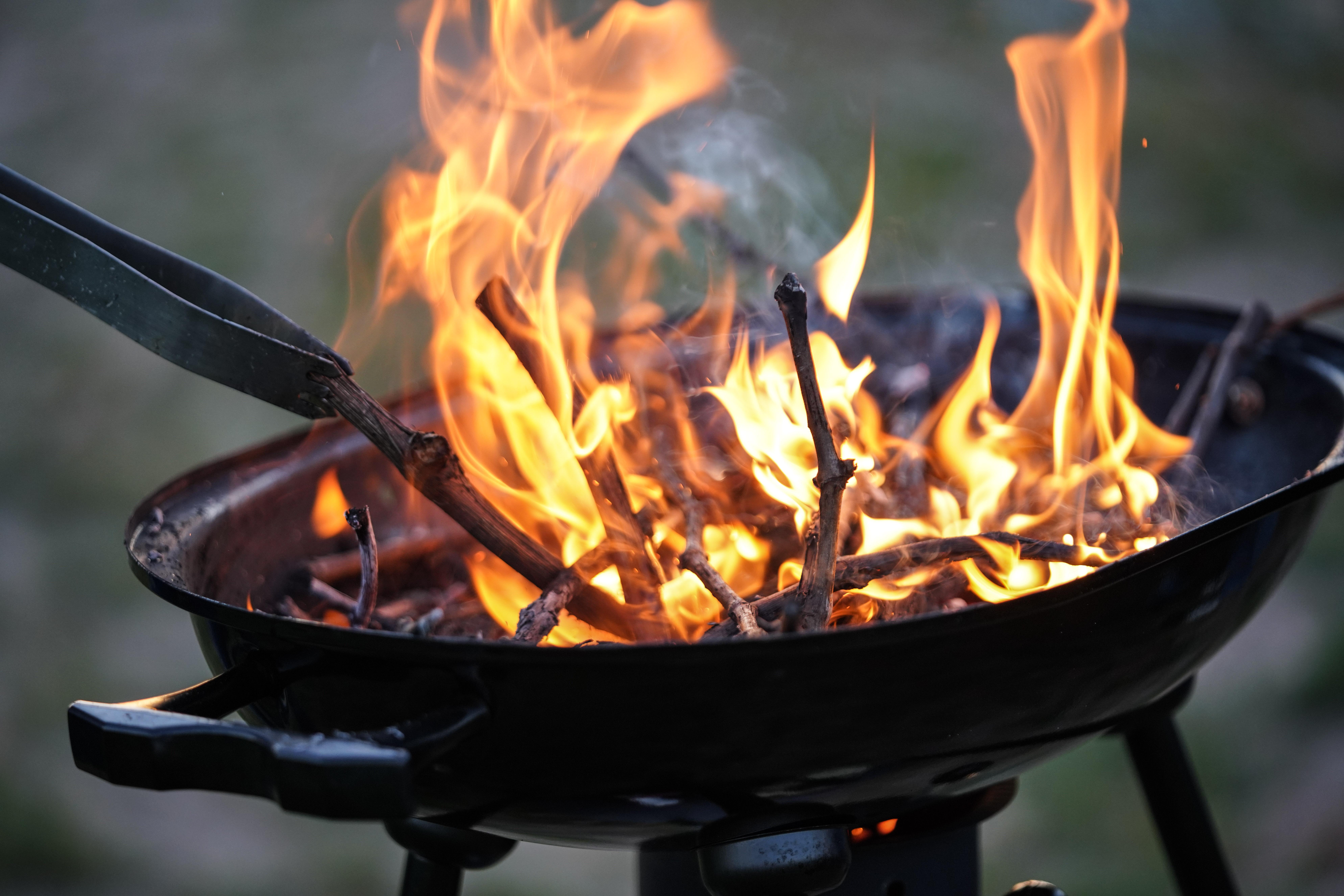 vuur barbecue wijnstokken