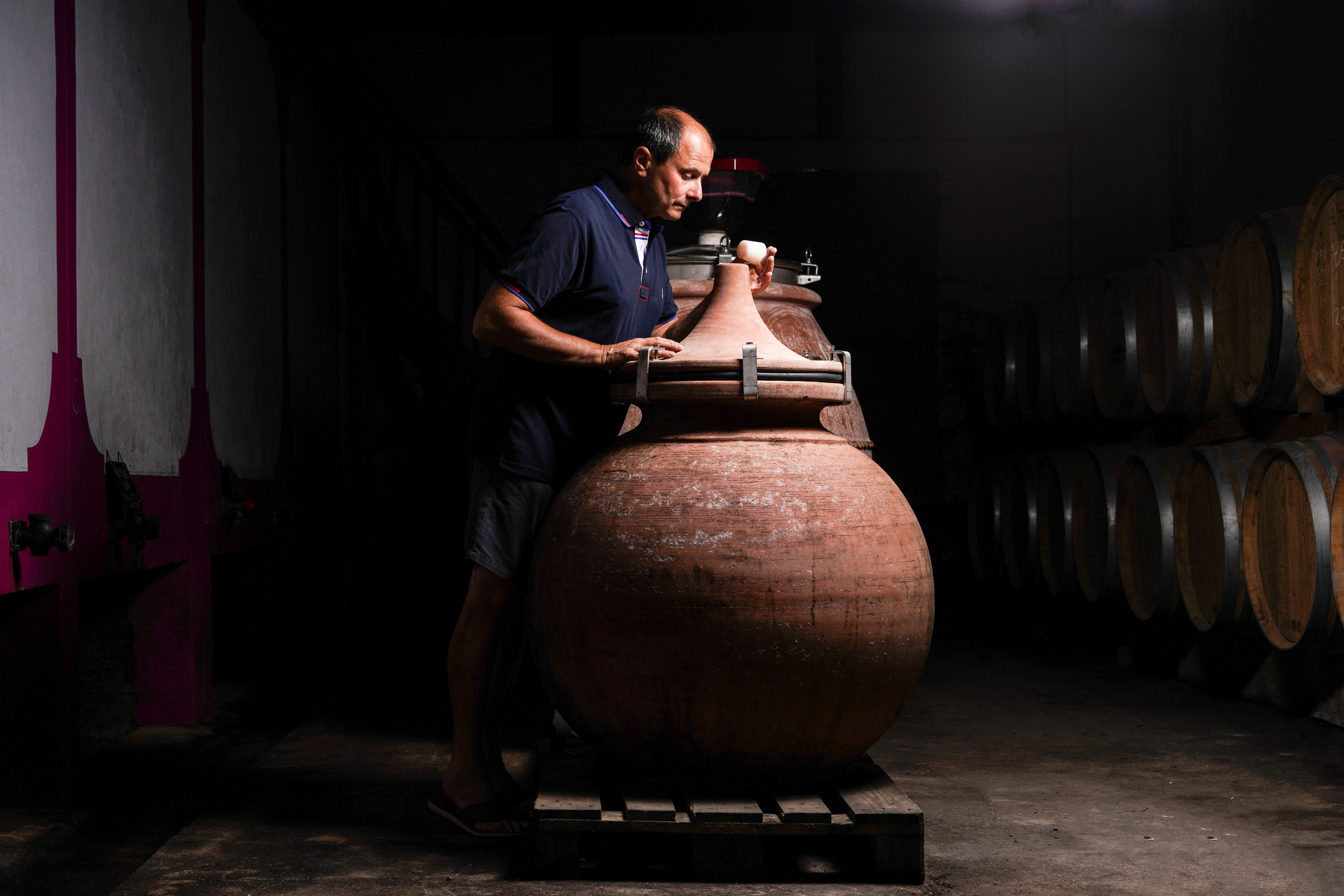 wijnmaker wijnboer wijnkelder