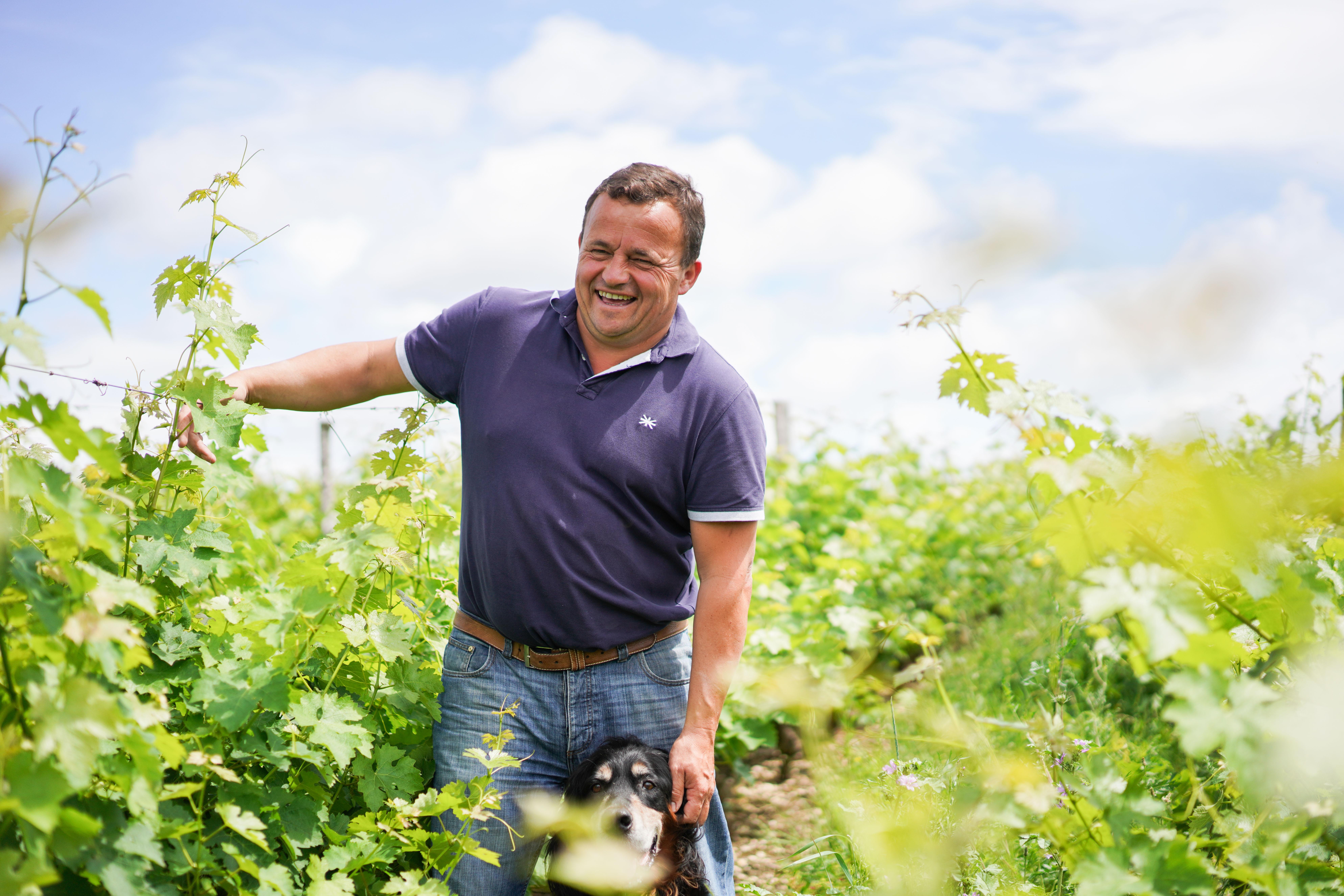 Marc Medeville portret interview wijnmaker wijn bordeaux